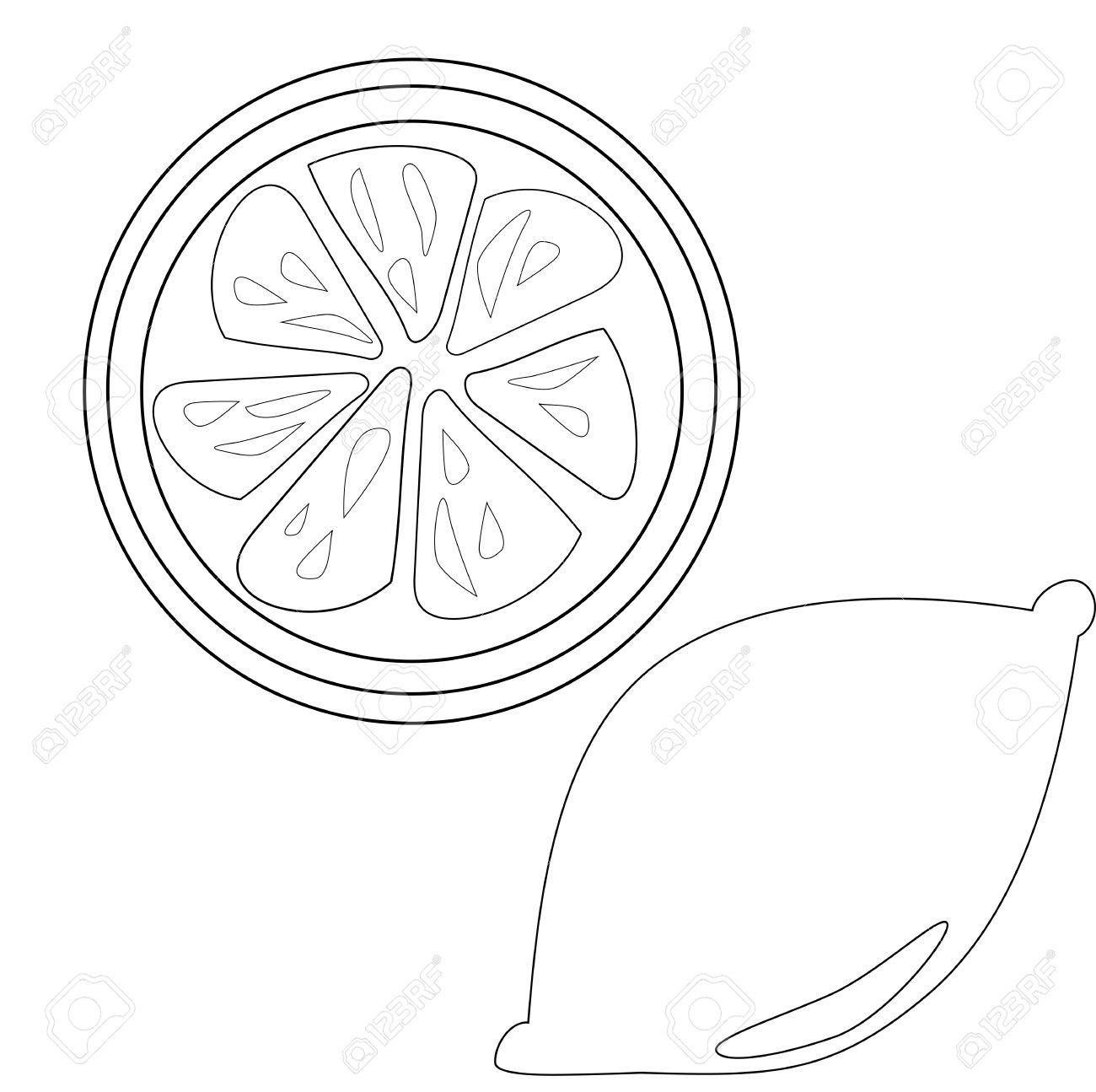 Lemon Slice Outline