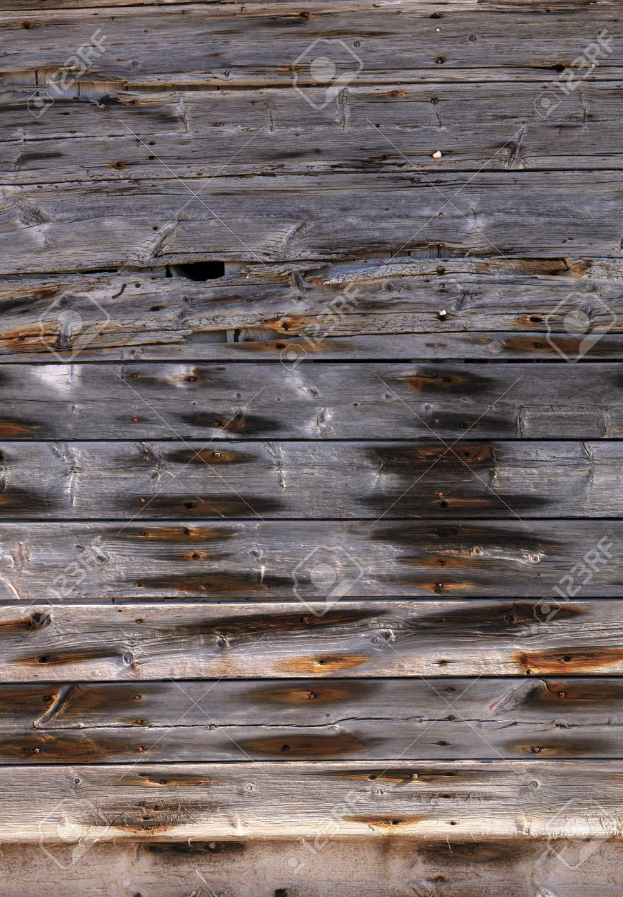 very old exterior wall of an old building made of dry wooden boards of gray color with orange spots of rusty nails - 116921189
