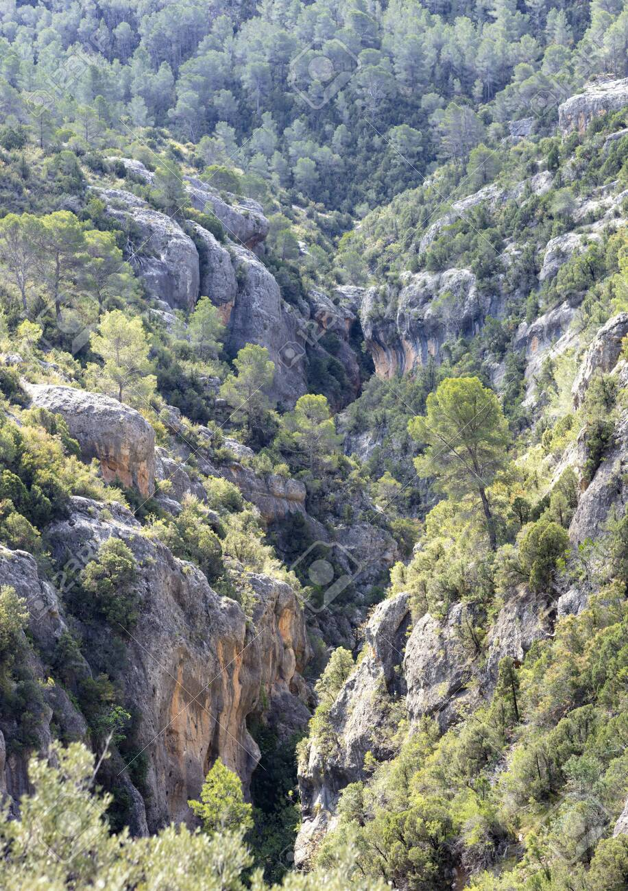 view of the ravine from the roman aqueduct, with the mediterranean forest and large rocks - 123523752