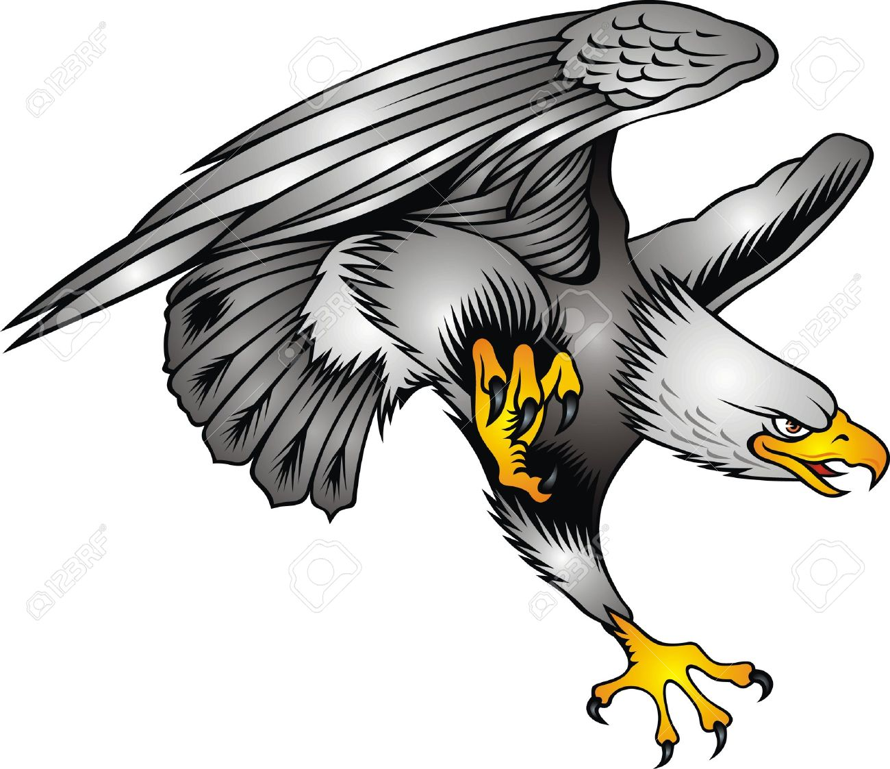 nice flying eagle on the white background Stock Vector - 17958150