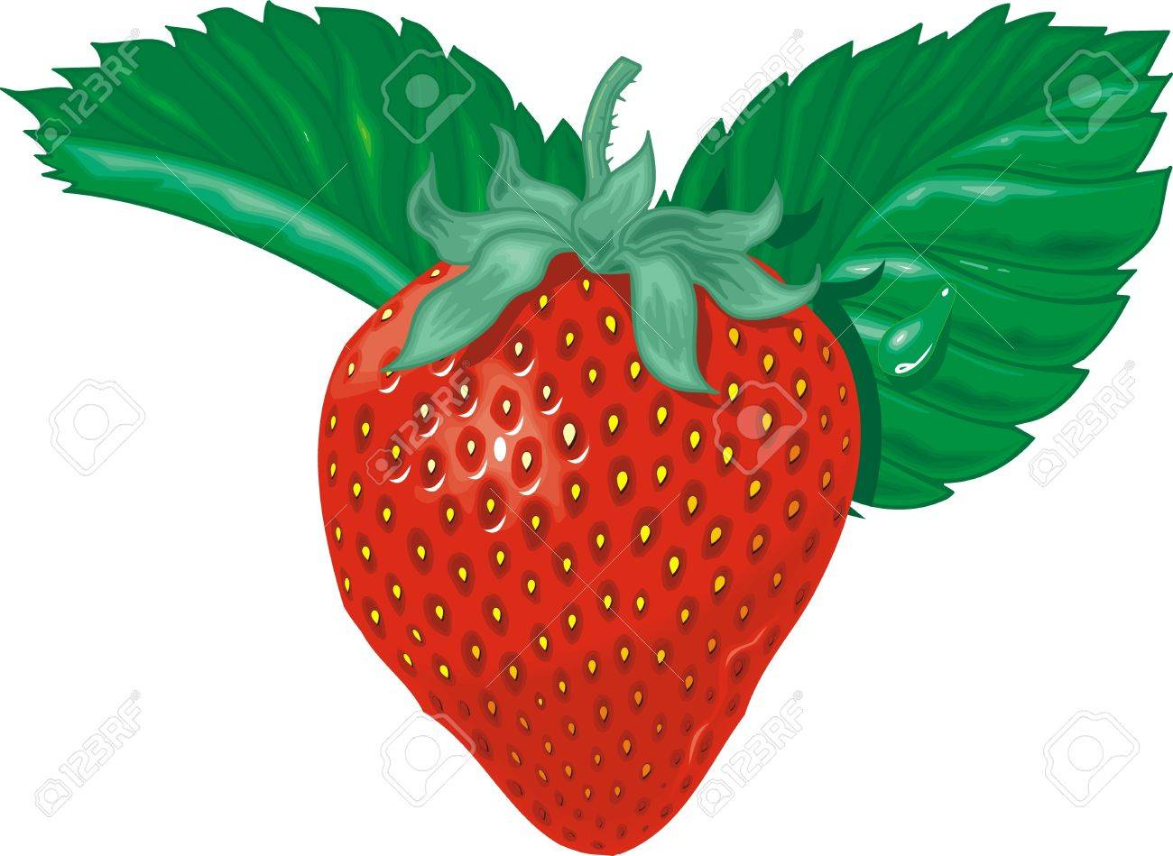 sweet strawberry isolated on the white background Stock Vector - 17958027