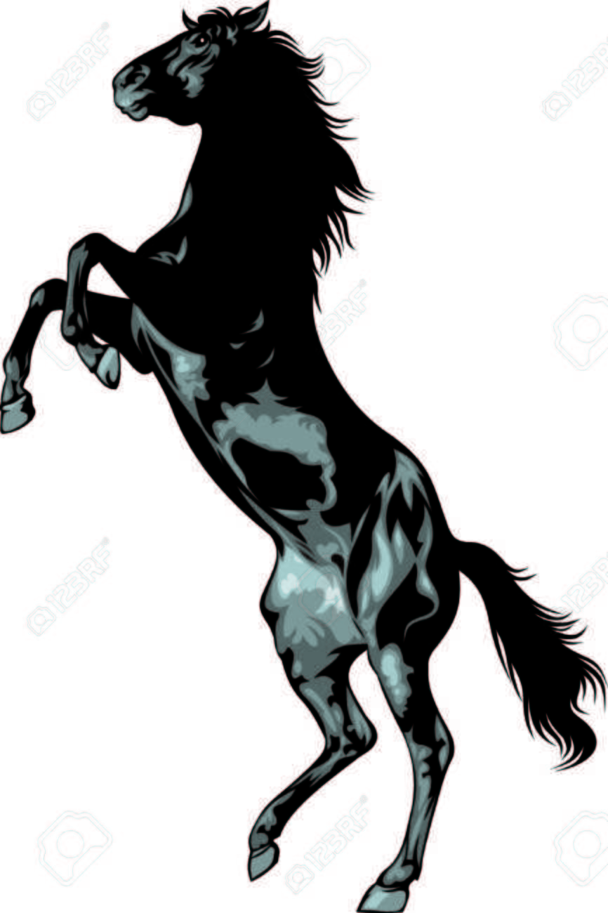 Black wild horse isolated on the white background stock vector 24285675