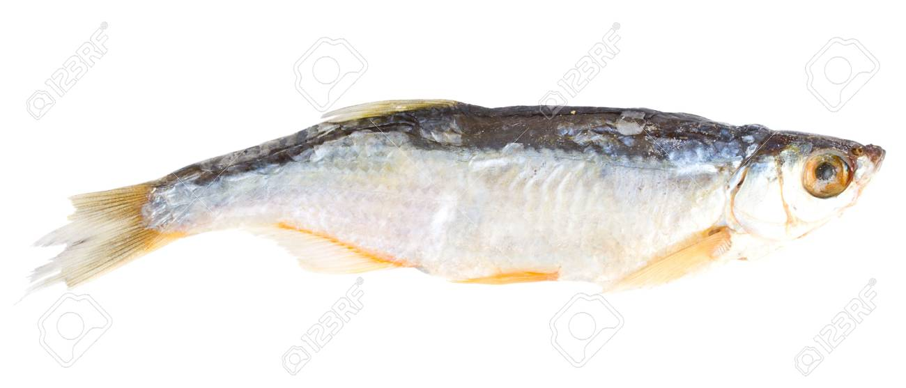 close-up dried fish, isolated on white Stock Photo - 3655866