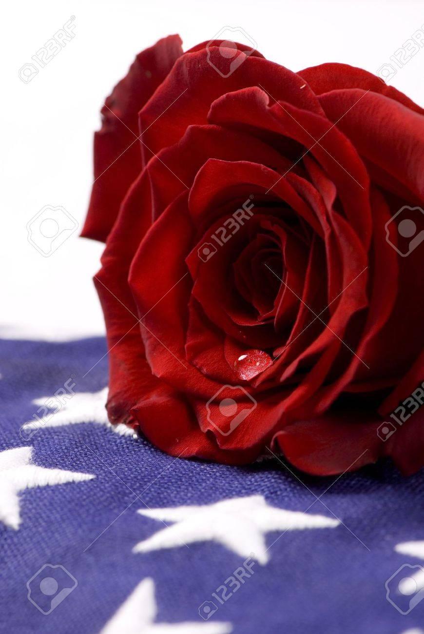 Ein Einsamer Rote Rose Liegt Auf Einem Gefalteten Amerikanische ...