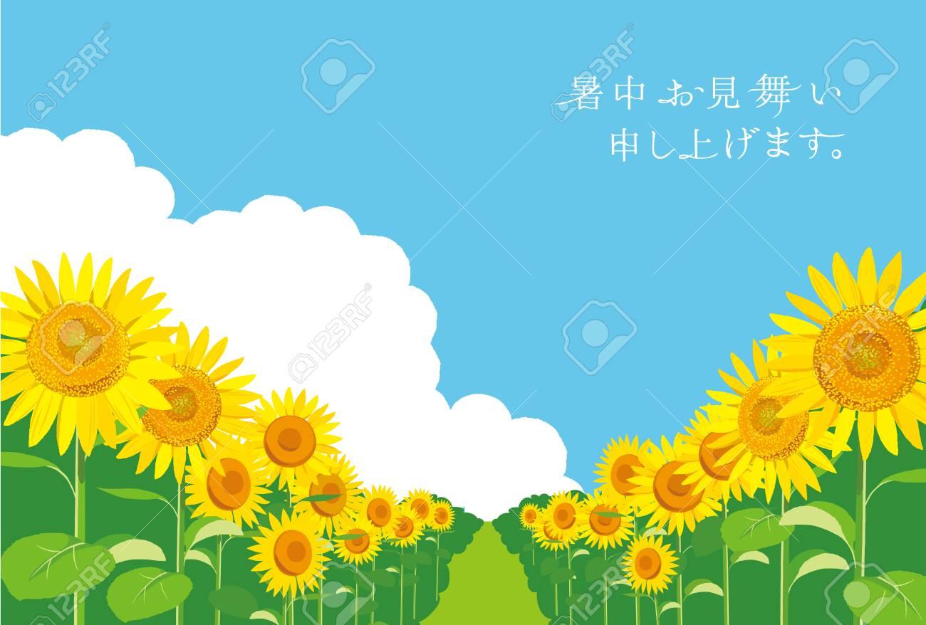 ベクトル イラスト 壁紙と背景ひまわりの庭と空を景色します 夏