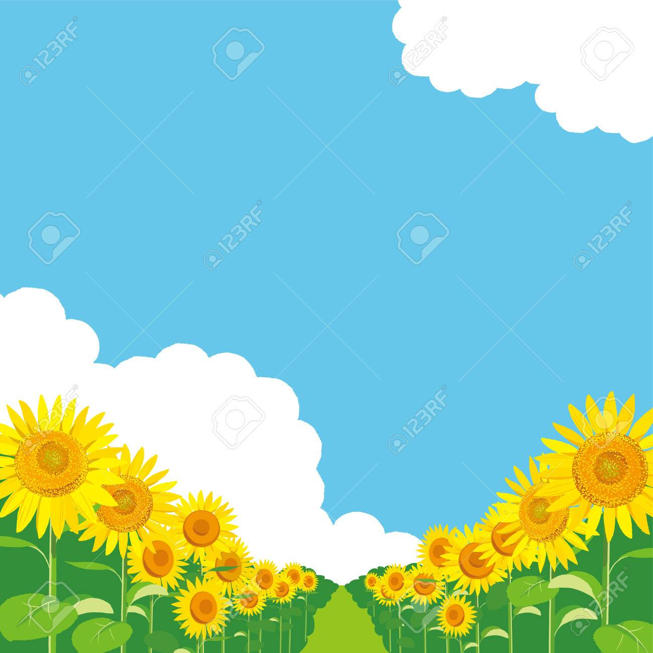 ベクトル イラスト 壁紙と背景ひまわりの庭と空を景色します 夏挨拶を のイラスト素材 ベクタ Image 8051