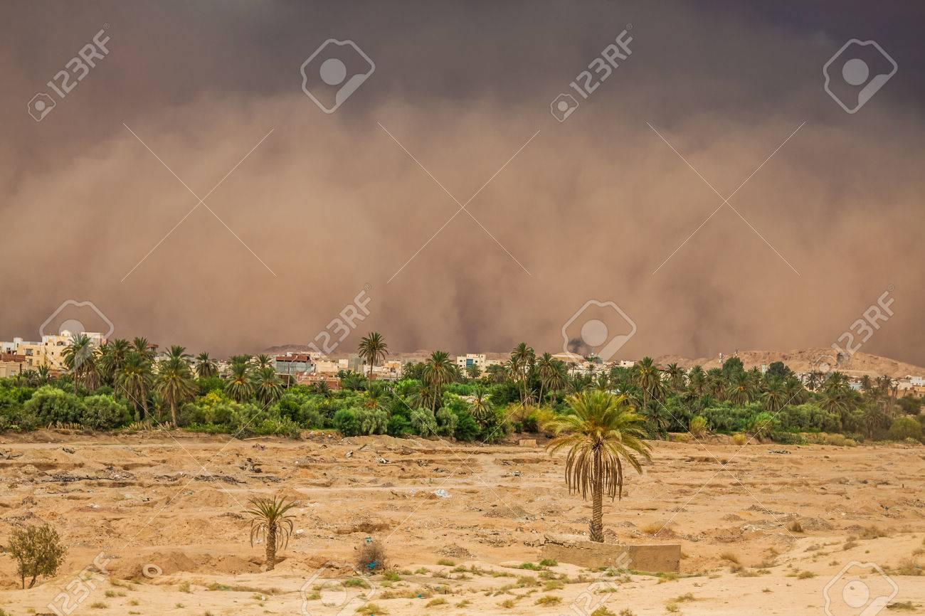 ガフサ, チュニジアの砂嵐 ロイ...