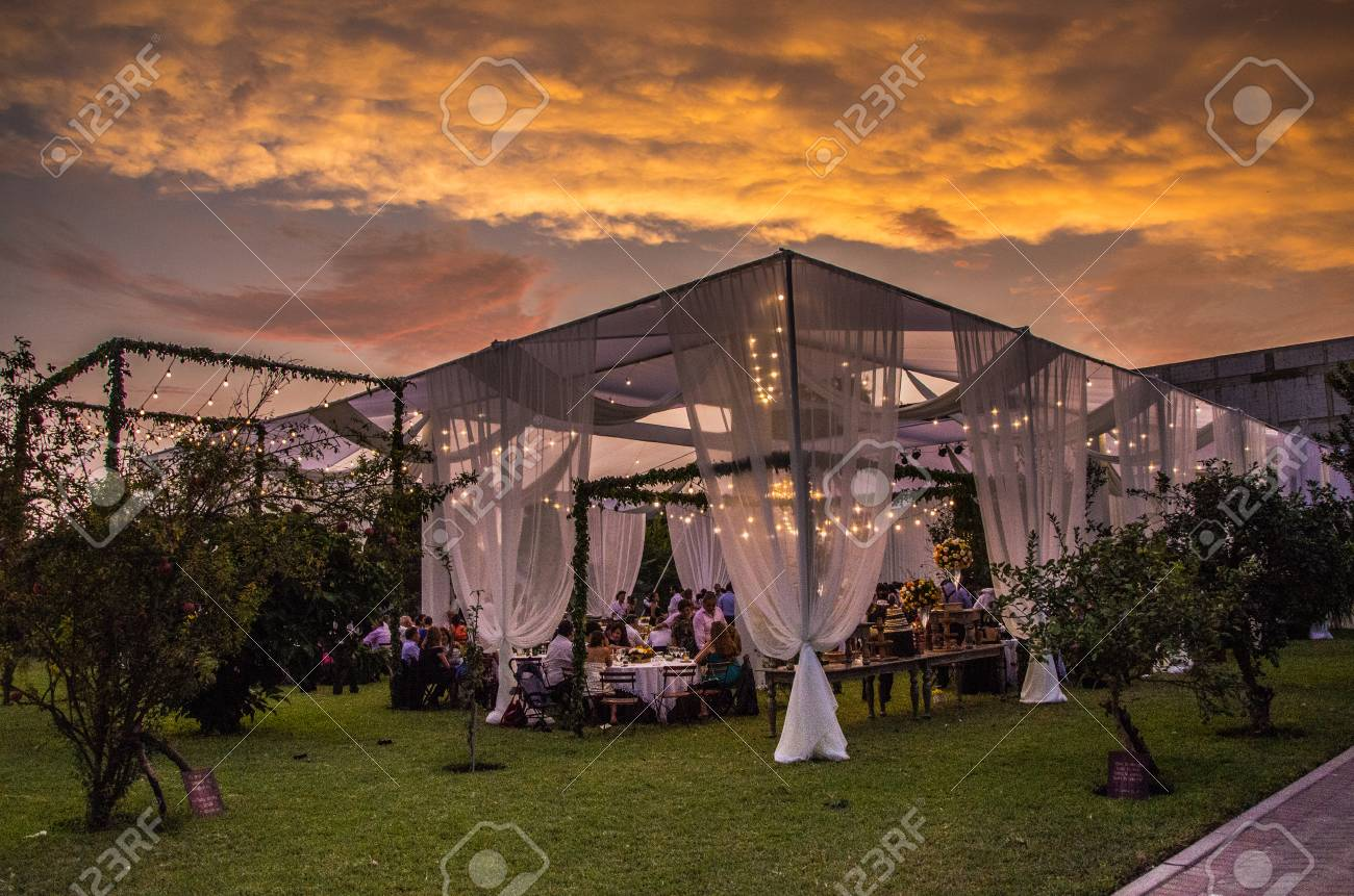 Decoration of a wedding in summer - 95142554