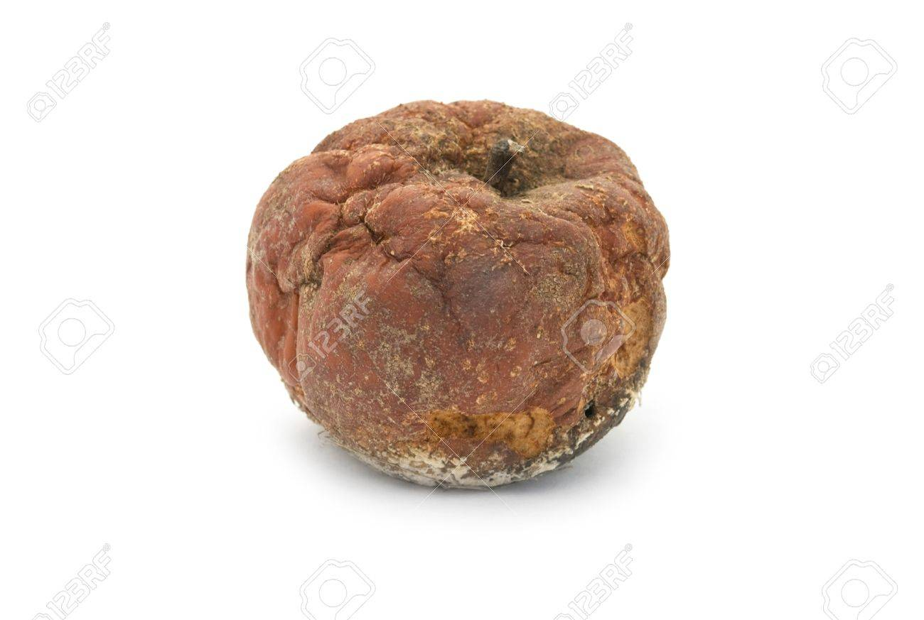 rotten apple is isolated on a white background - 11559361