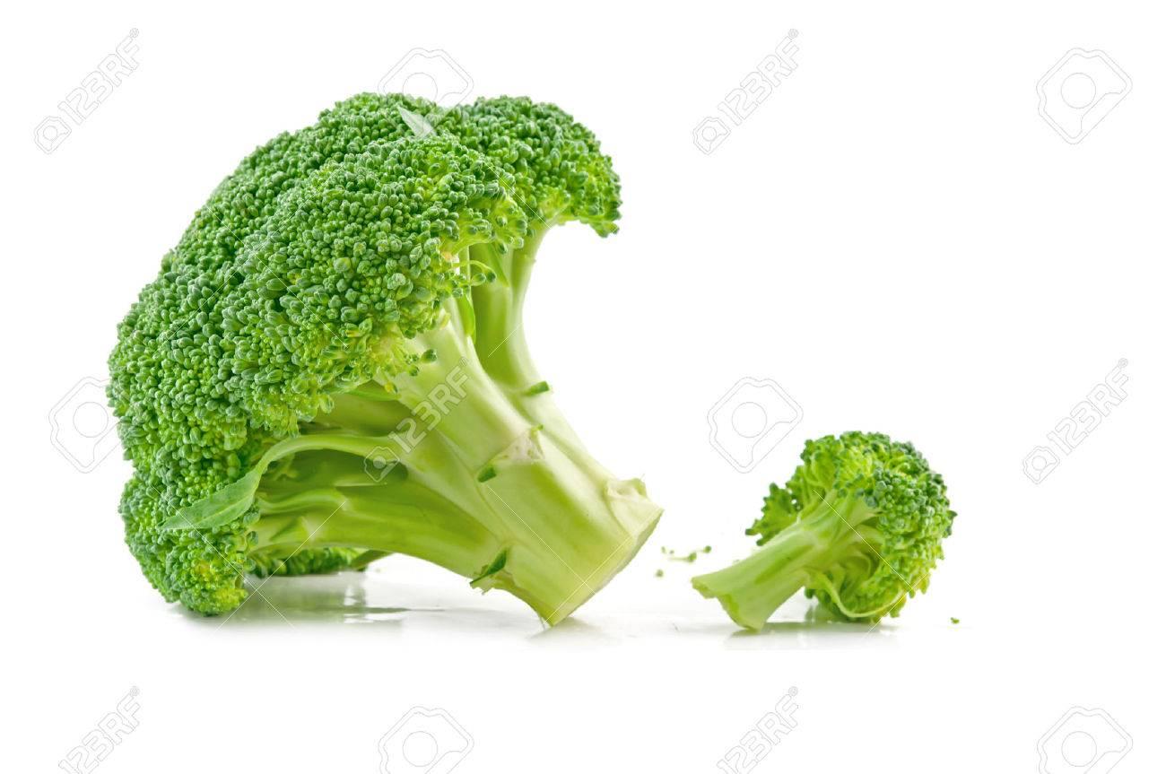 fresh raw broccoli isolated on white background - 24190860