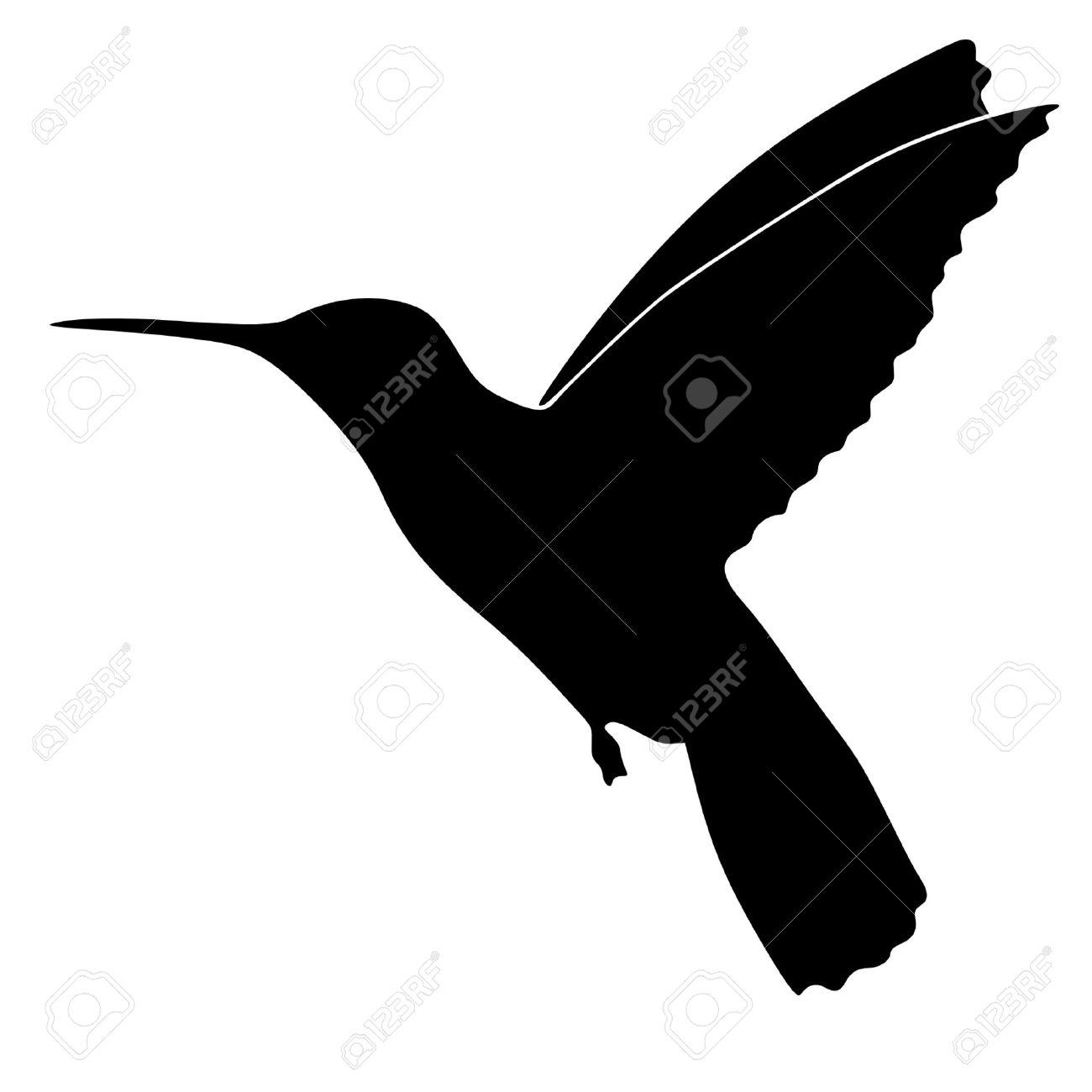 Ilustración De Estilo De La Silueta De Negro De Colibri