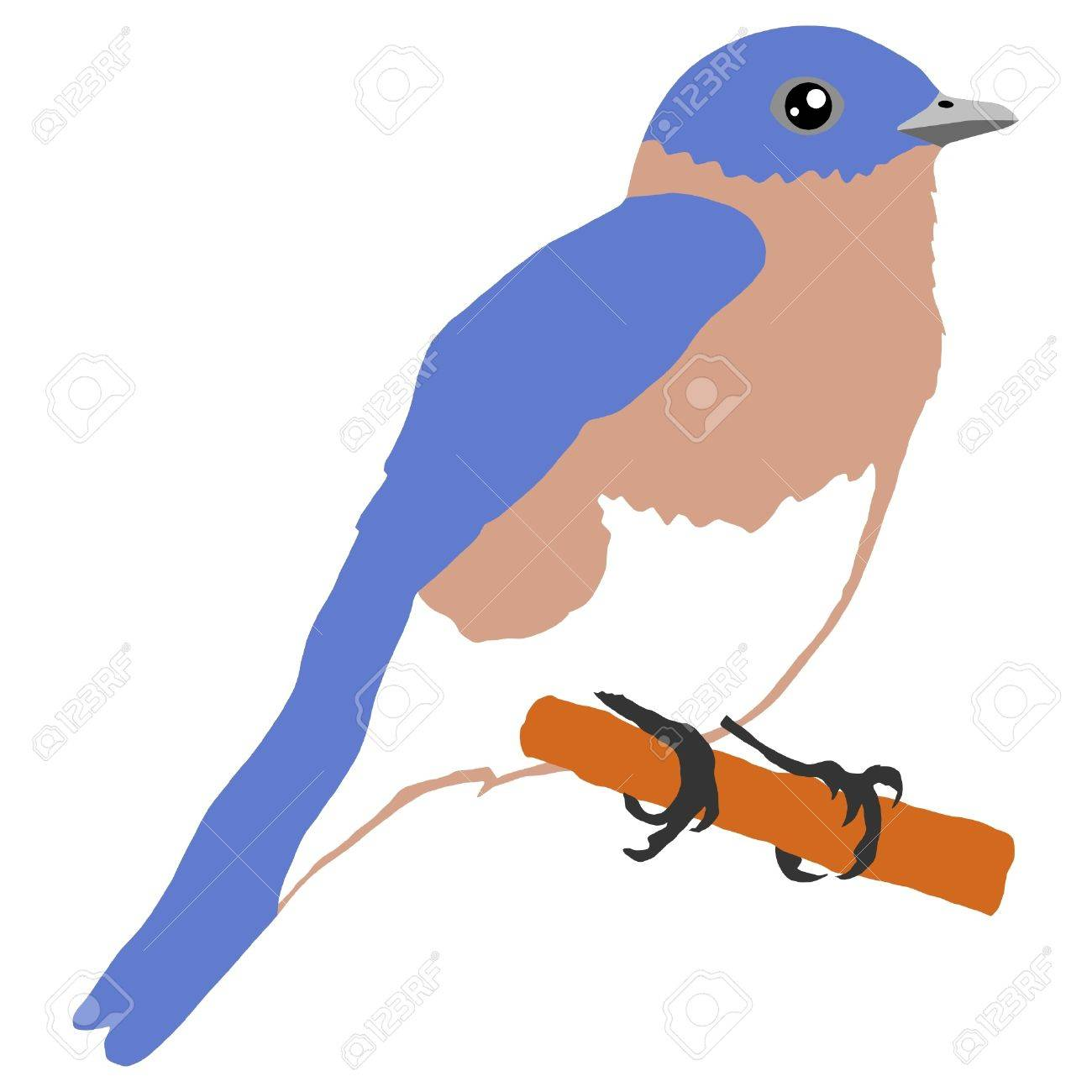 1 523 bluebird cliparts stock vector and royalty free bluebird rh 123rf com Free Bird Graphics Free Bird Graphics