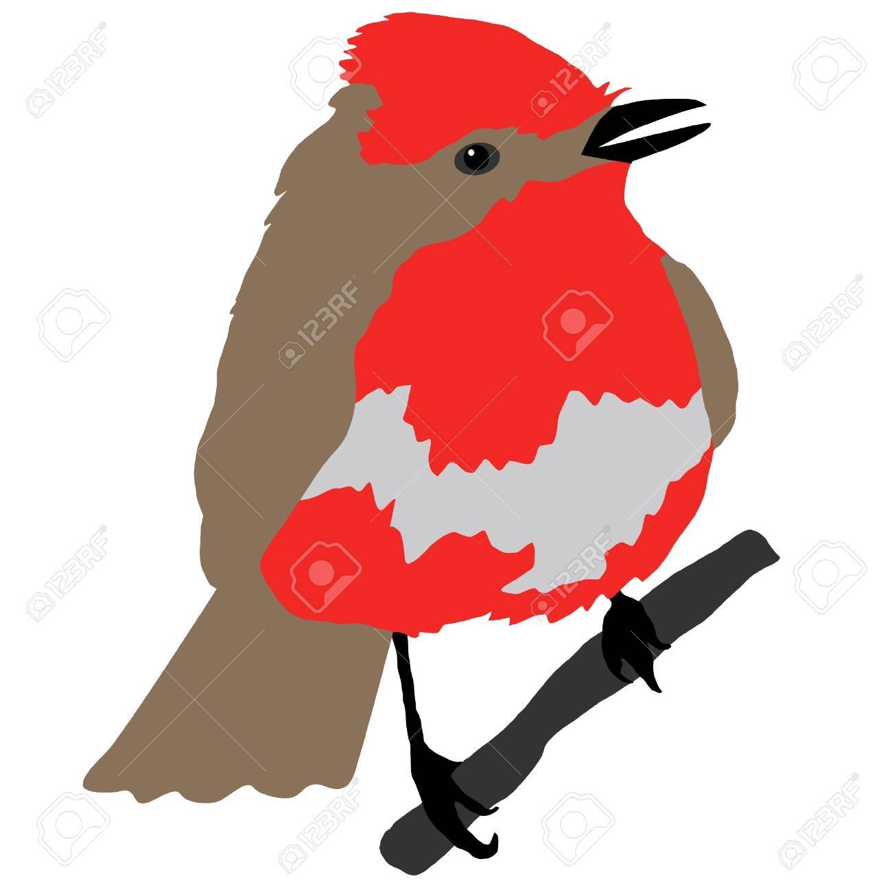 Illustration in style of colored silhouette of flycatcher Stock Vector - 11611474
