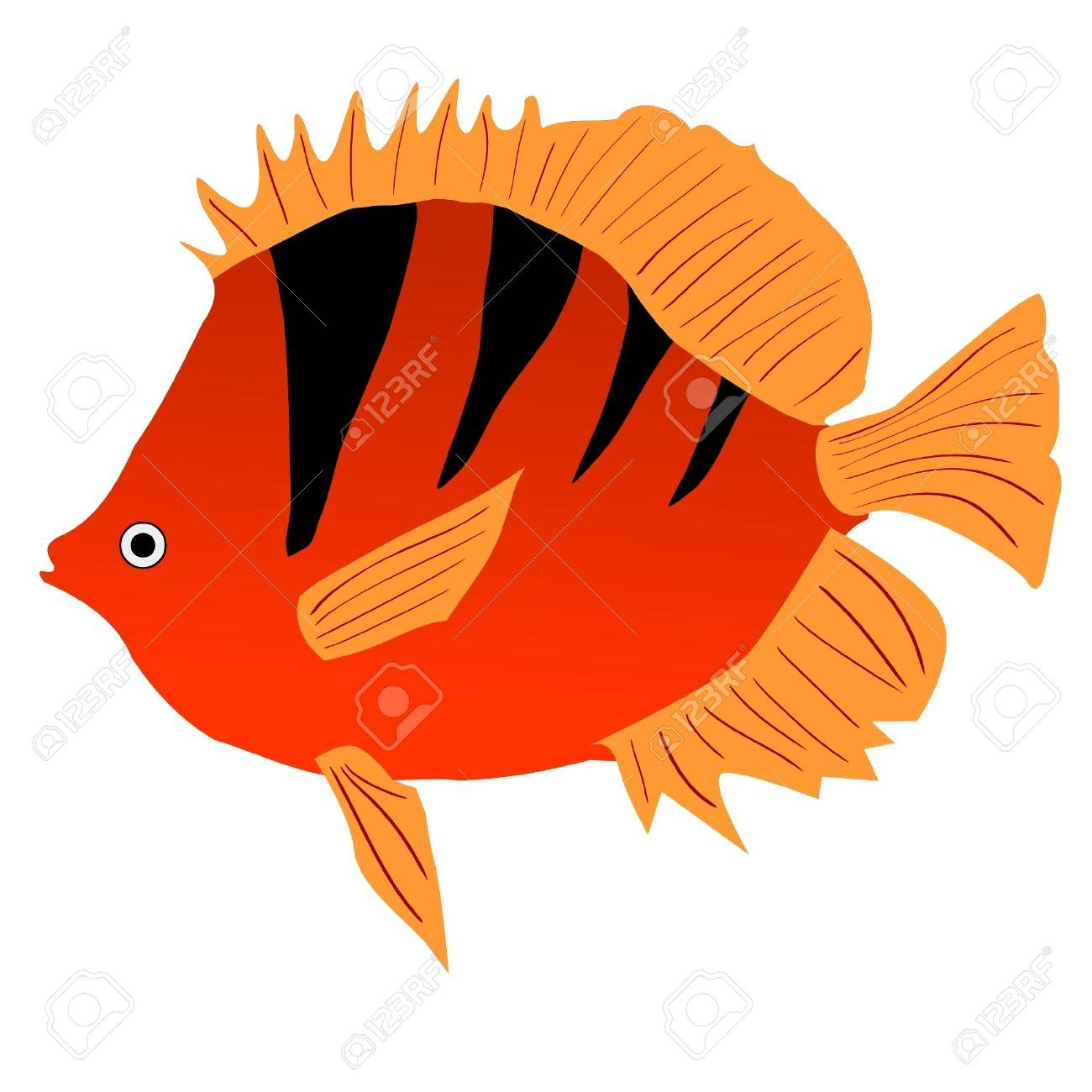 One Colored Illustration Of A Tropical Fish Royalty Free Cliparts ...