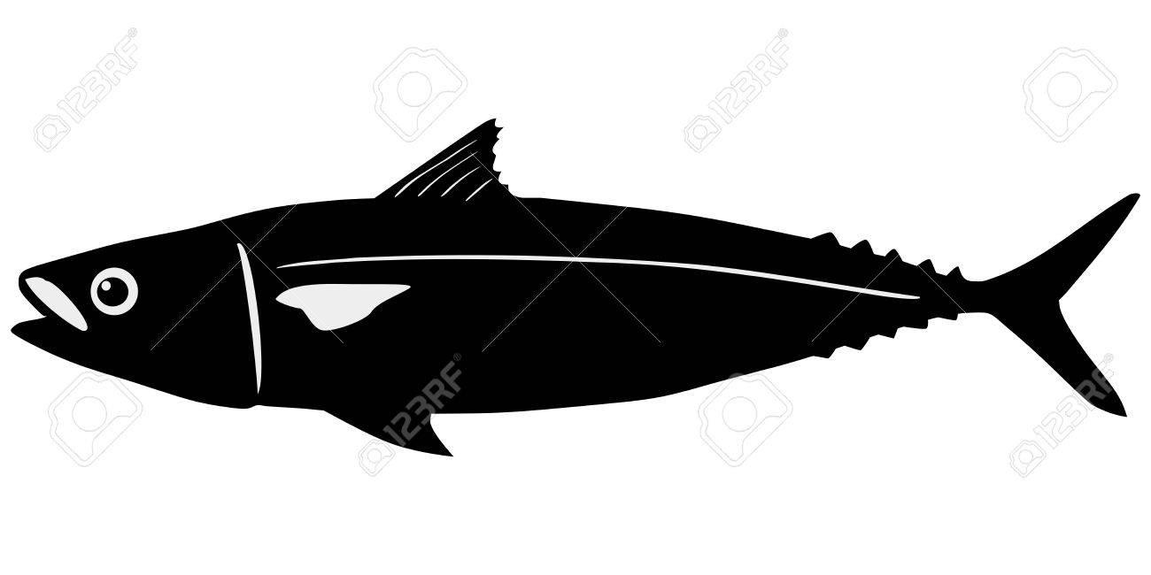 silhouette of the mackerel on white background Stock Vector - 15786540