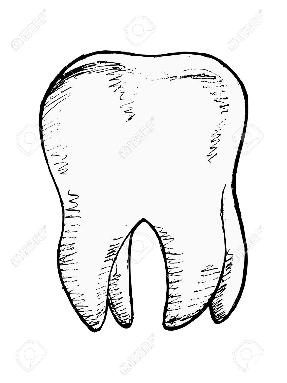 hand drawn, sketch illustration of tooth Stock Vector - 18056647