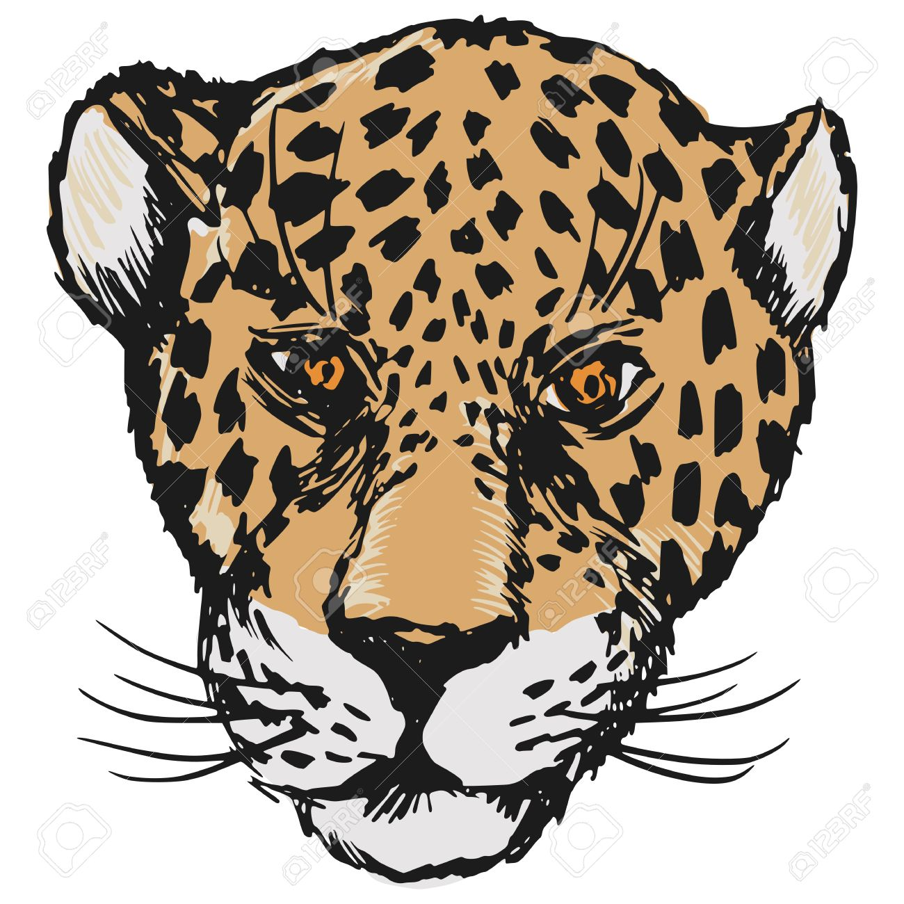 Hand Drawn Sketch Cartoon Illustration Of Jaguar Royalty Free