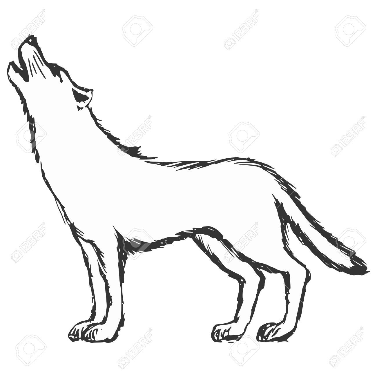 Hand Drawn, Sketch, Cartoon Illustration Of Wolf Royalty Free ...