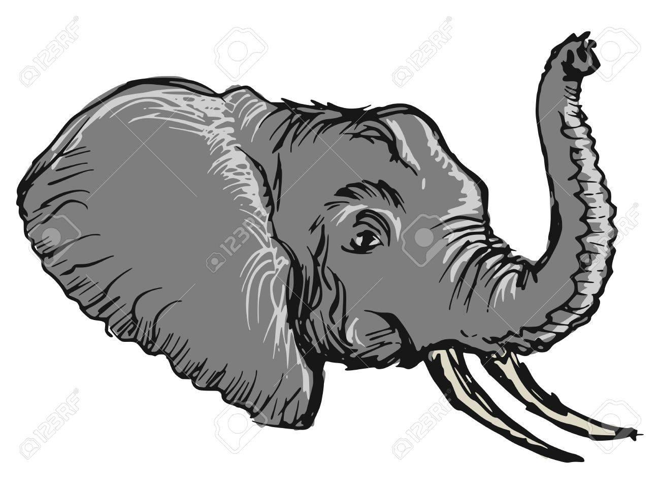 Cartoon Hand Drawn Illustration Of Head Of Elephant Royalty Free ...