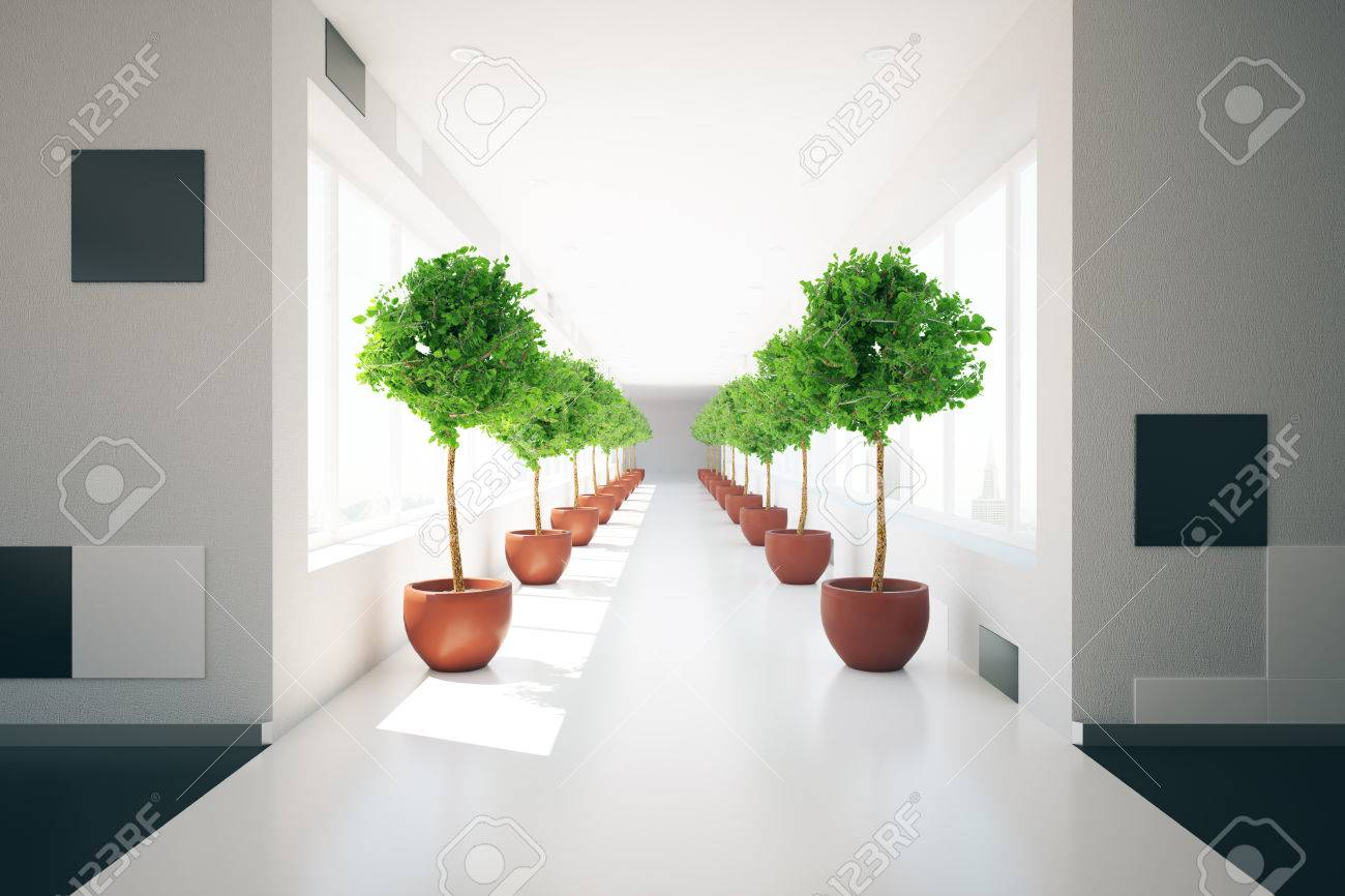 Modern corridor interior with rows of decorative plants and