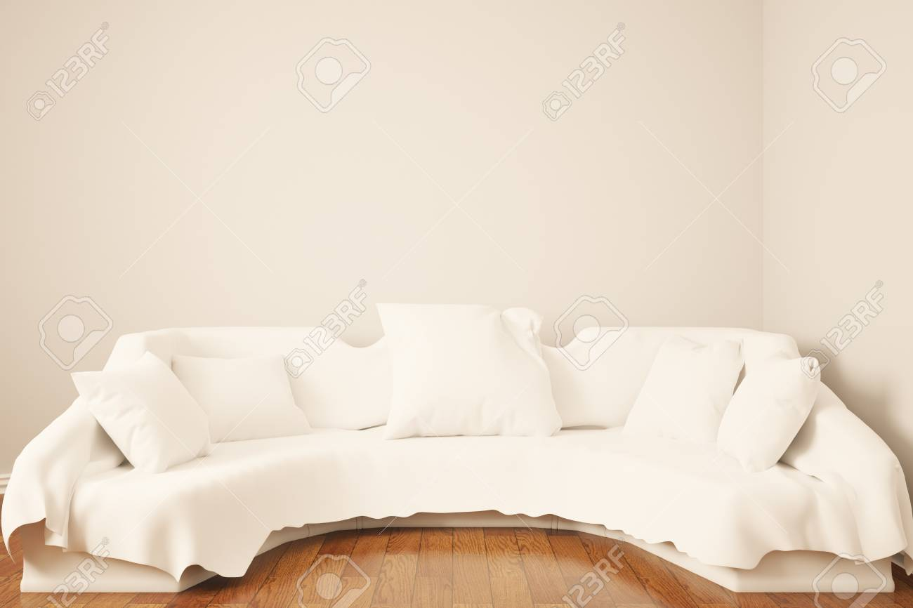 Pleasing Front View Of White Sofa With Pillows In Interior With Blank Squirreltailoven Fun Painted Chair Ideas Images Squirreltailovenorg