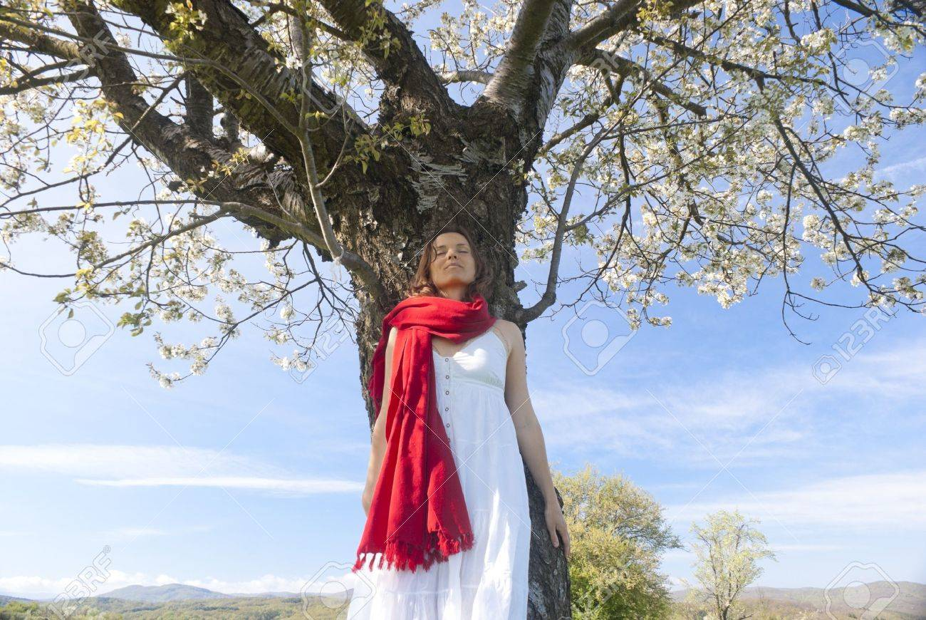 Beautiful young woman leaning on a cherry tree in bloom feeling one with Nature Stock Photo - 13254337