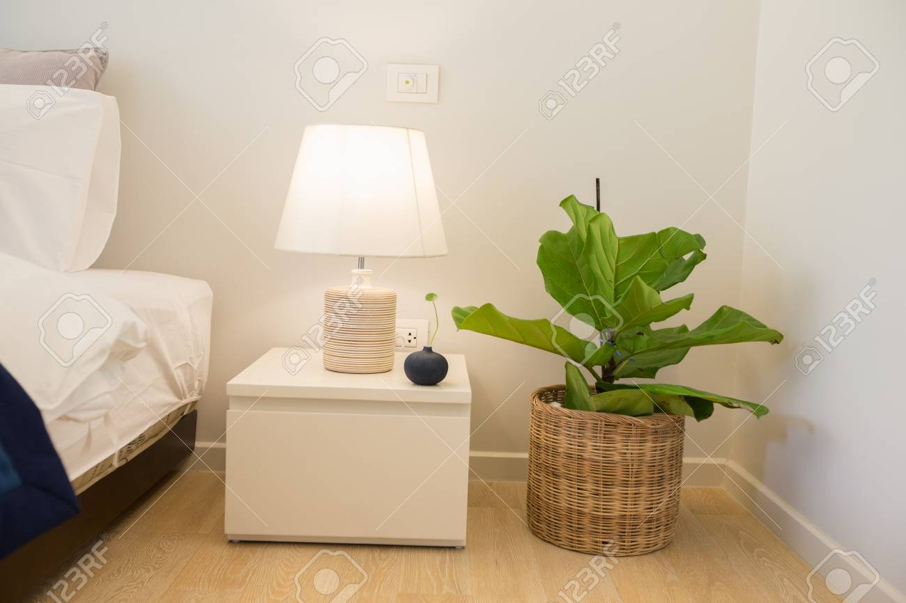 Lamp on bedside table and plant pot for decorative in bedroom