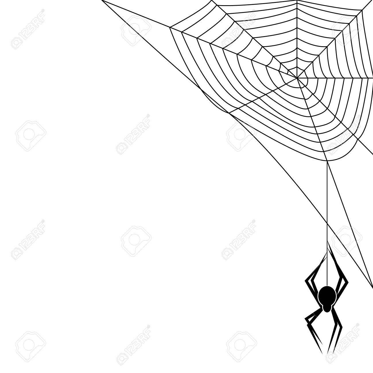 Spider Stock Vector - 14460739