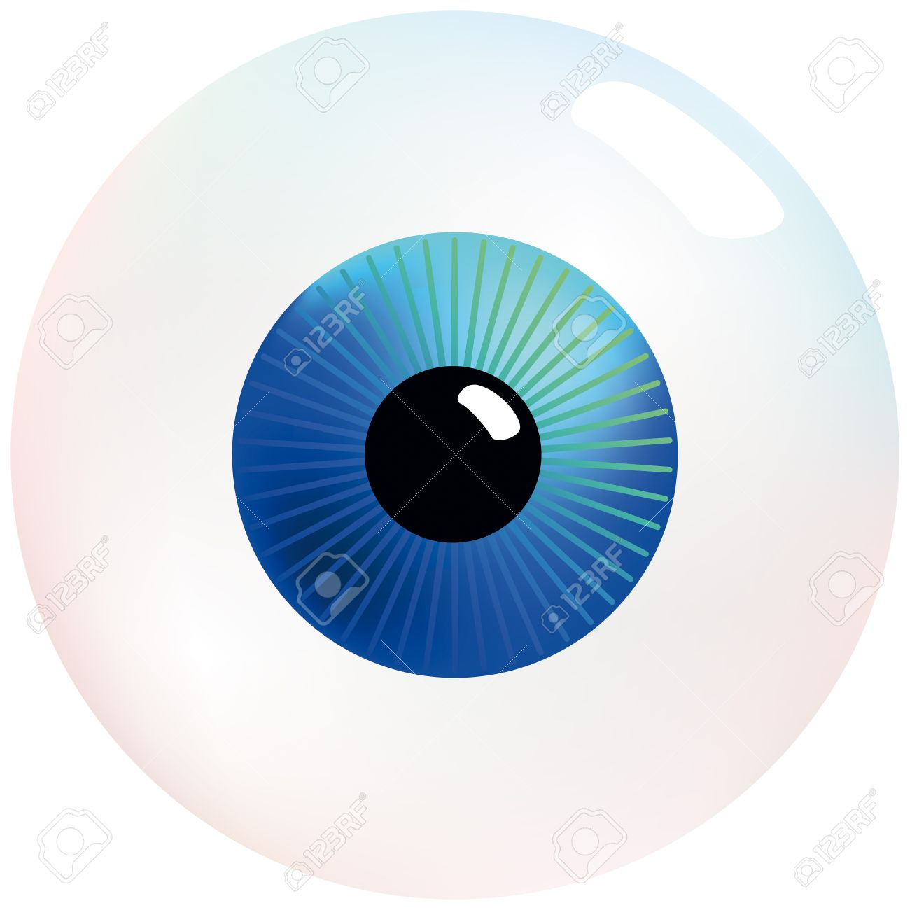 eyeball with blue and turquoise colored iris that stares at rh 123rf com free vector eyeball flying eyeball vector