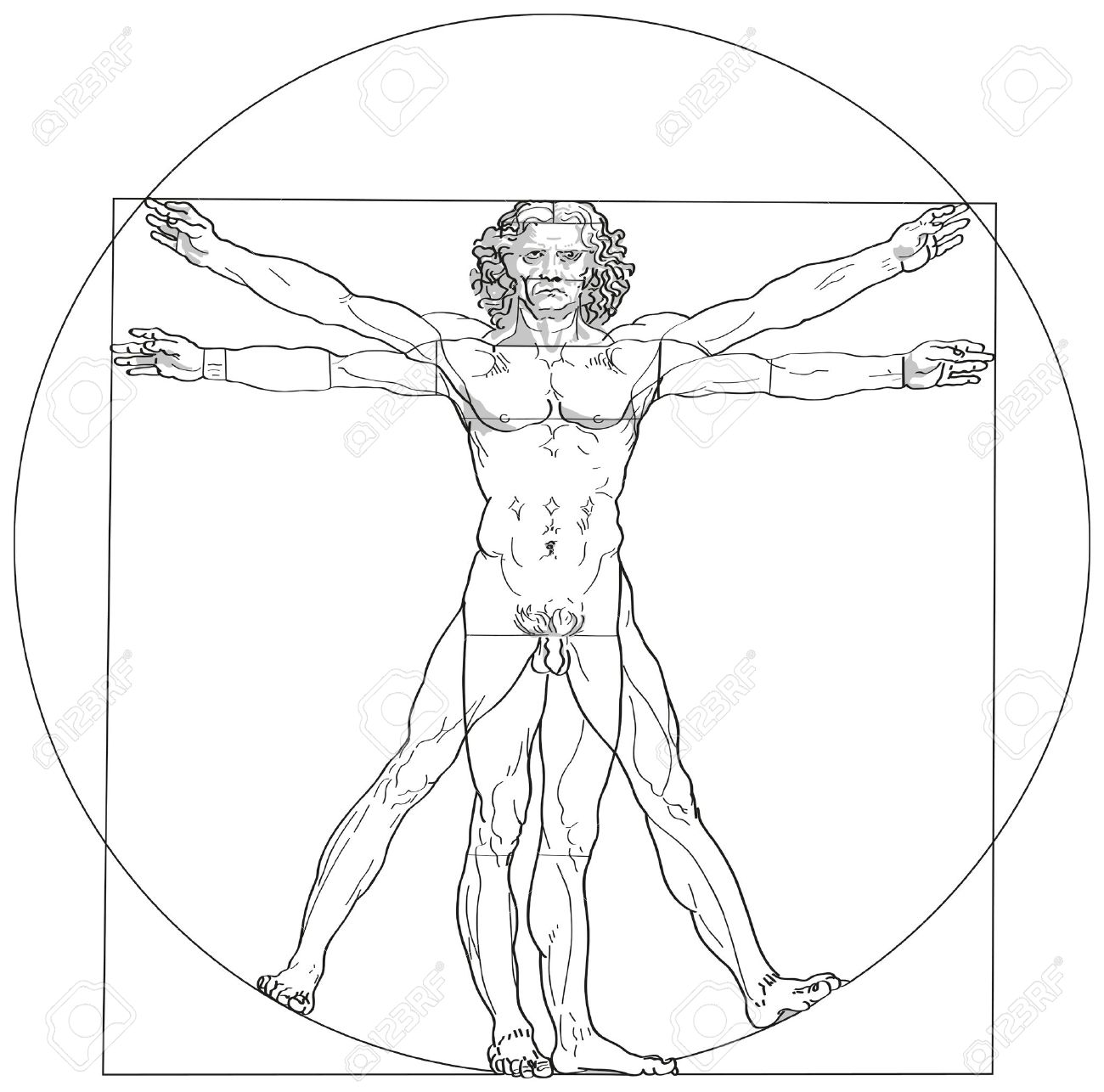 Vitruvian Man Leonardo Da Vinci Royalty Free Cliparts, Vectors ...