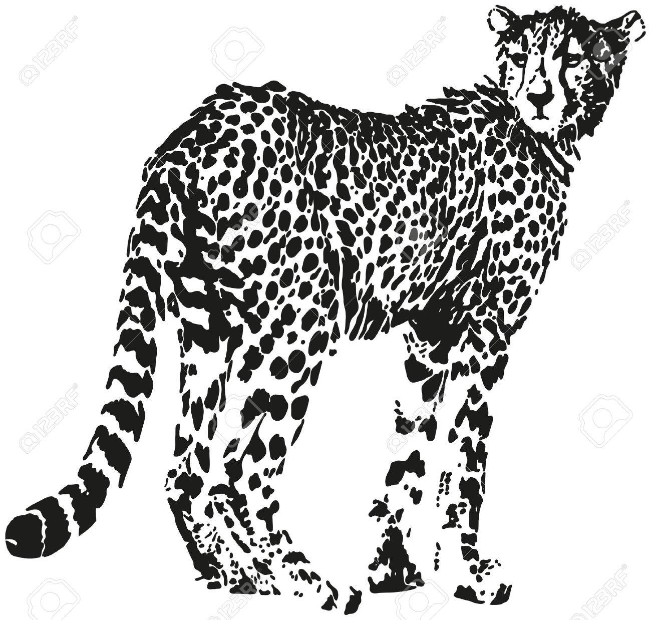 Leopard big cat shaped from black spots optical illusion stock vector 28054520