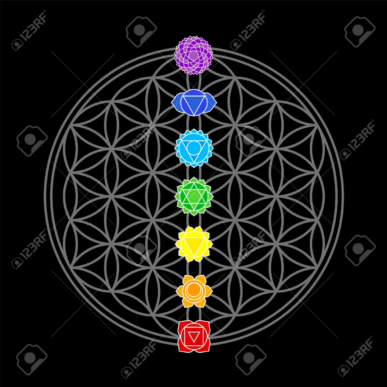 The seven main chakras, which match perfectly onto the junctions of the Flower-of-Life-Symbol - black background Stock Vector - 28111312