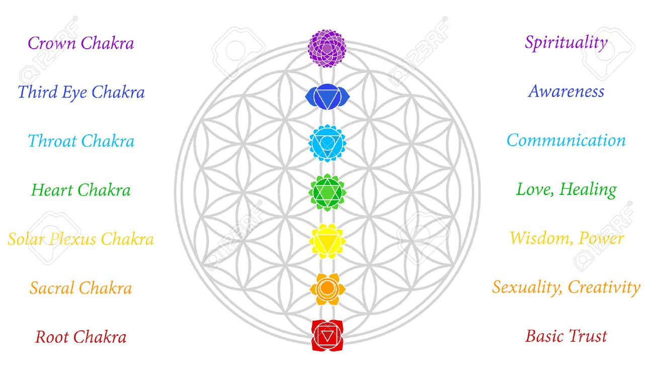 photo relating to Free Printable Chakra Chart titled Chakra Inventory Shots And Photos - 123RF