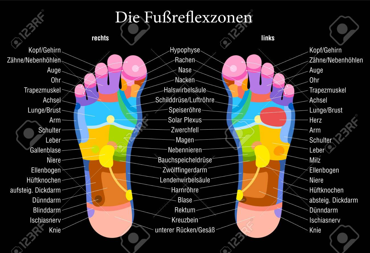 Foot Reflexology Chart With Accurate Description Royalty Free ...