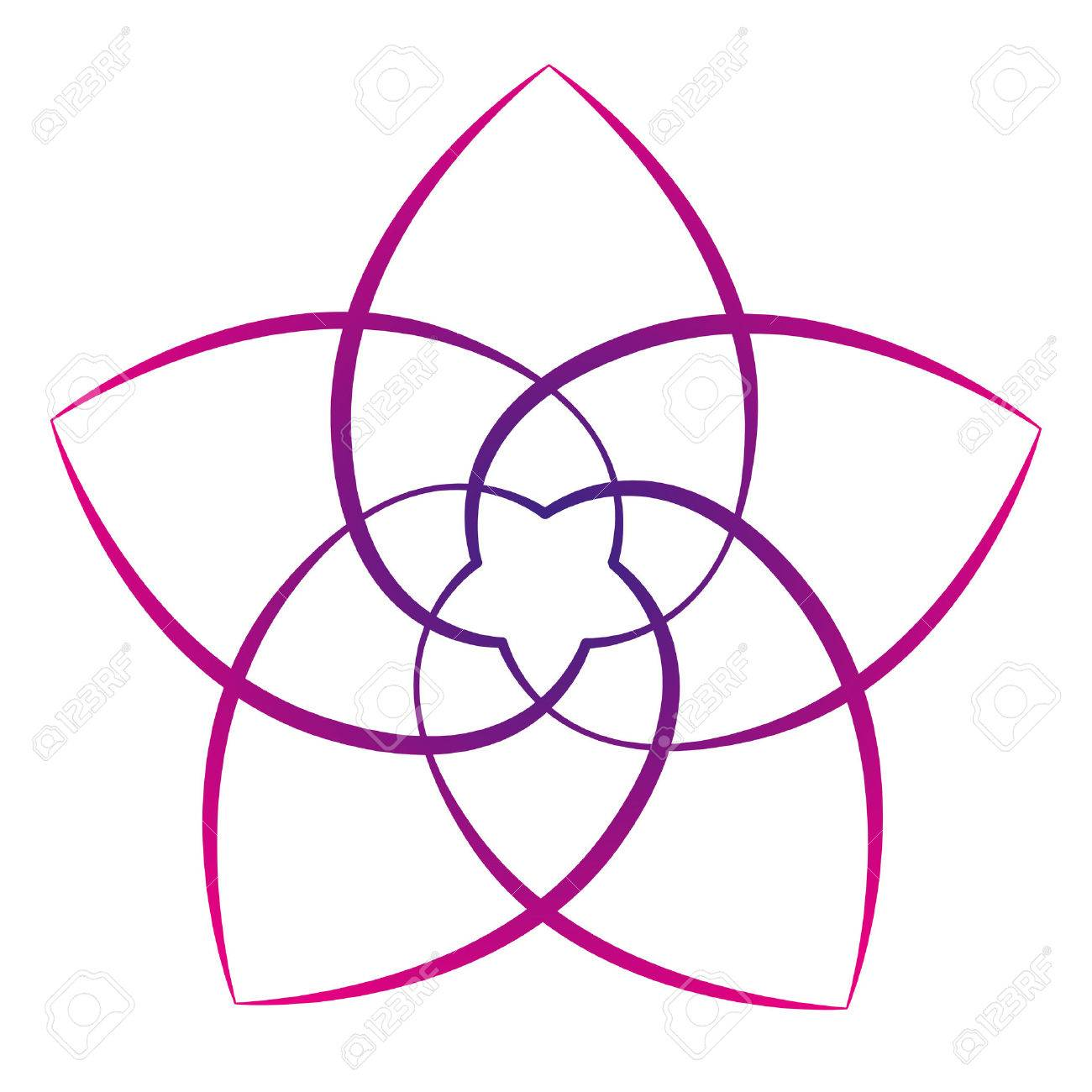 Pink flower of the venus, symbol of love and harmony. Isolated vector illustration on white background. - 31055573