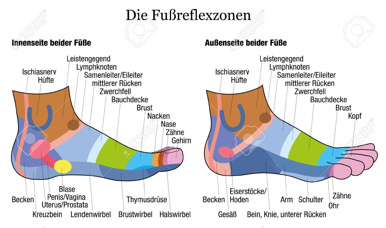 Fussreflexzonen Chart - Innen Und Außen Ansicht Der Füße - Mit ...
