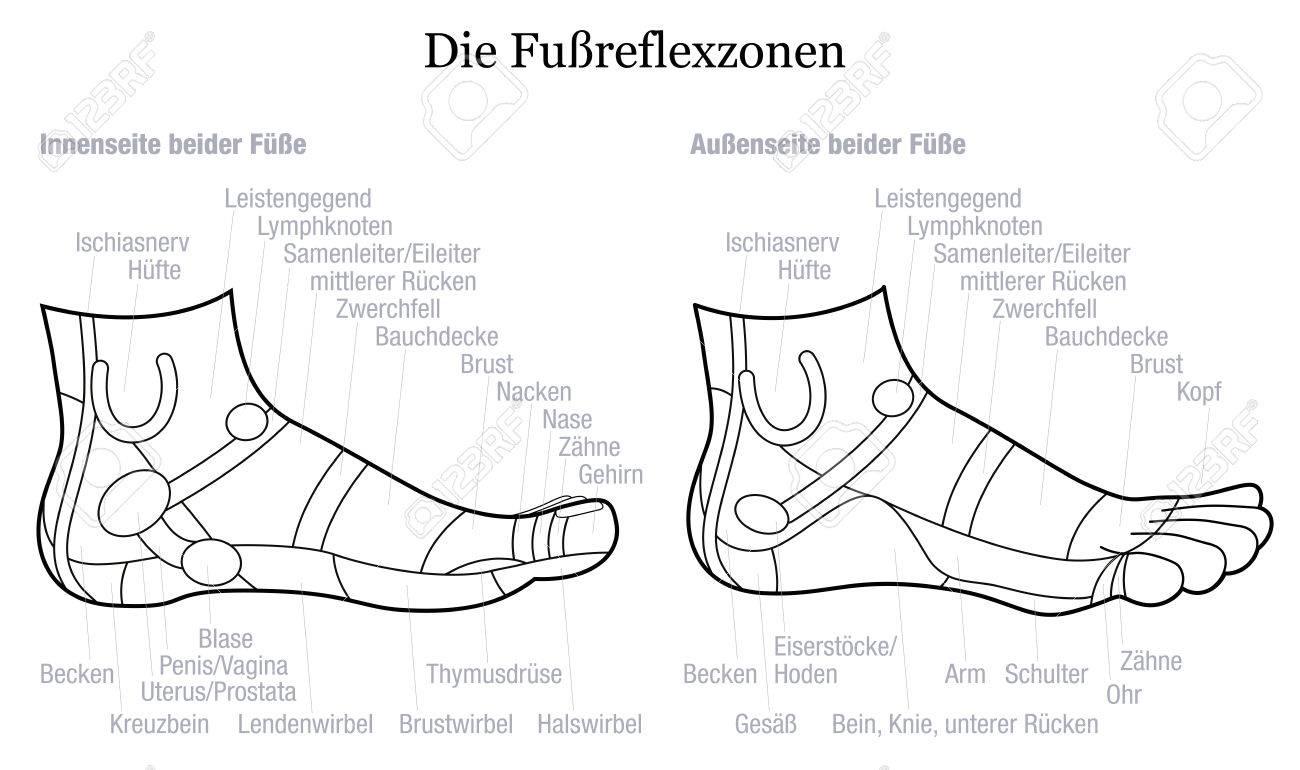 Fussreflexzonenkarte - Innen Und Außen Ansicht Der Füße - Mit ...