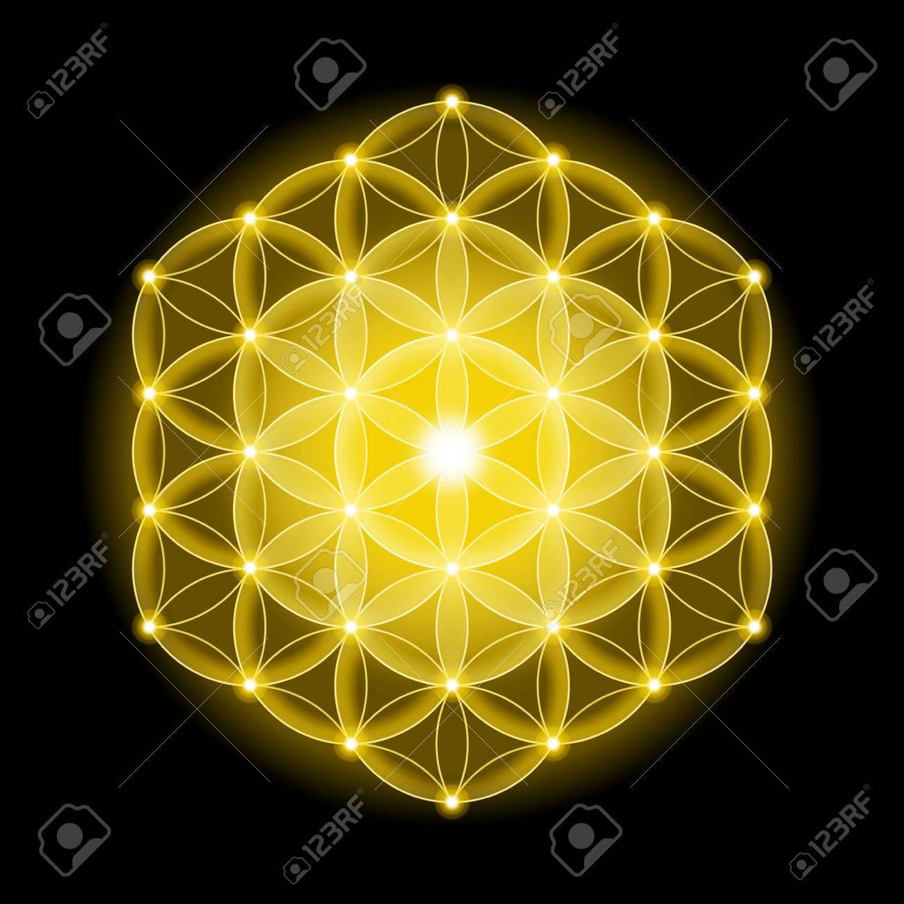 Flor De La Vida Cósmica Dorada Con Estrellas Sobre Fondo Negro Un