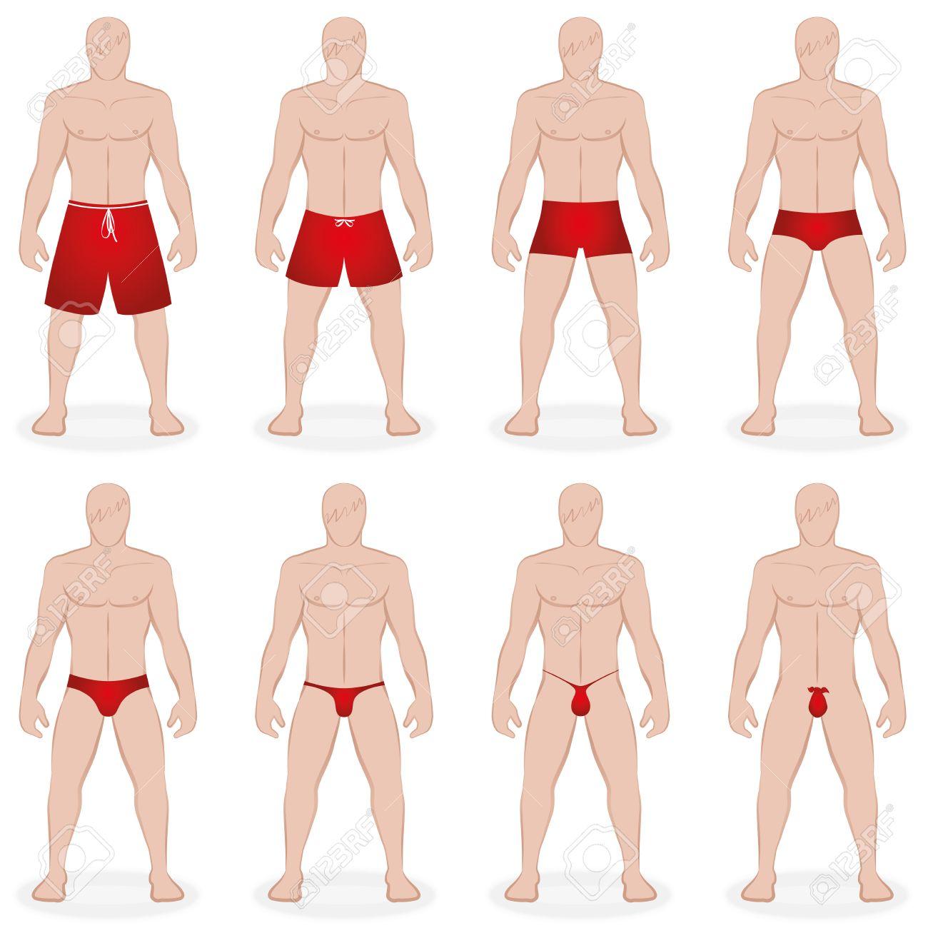 f8ed24c27539 Para hombre del traje de baño - traje de baño diferentes en varios estilos,  longitudes y tamaños - bermudas, como tanga, tanga - ilustración vectorial  ...