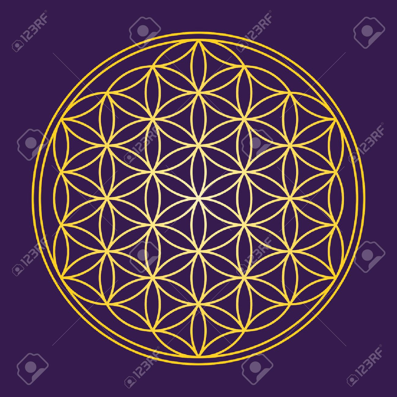 Flower of Life - Gold on dark purple background - a geometrical figure, composed of multiple evenly-spaced, overlapping circles. A strong symbol since ancient times, forming a flower-like pattern. Standard-Bild - 52545866