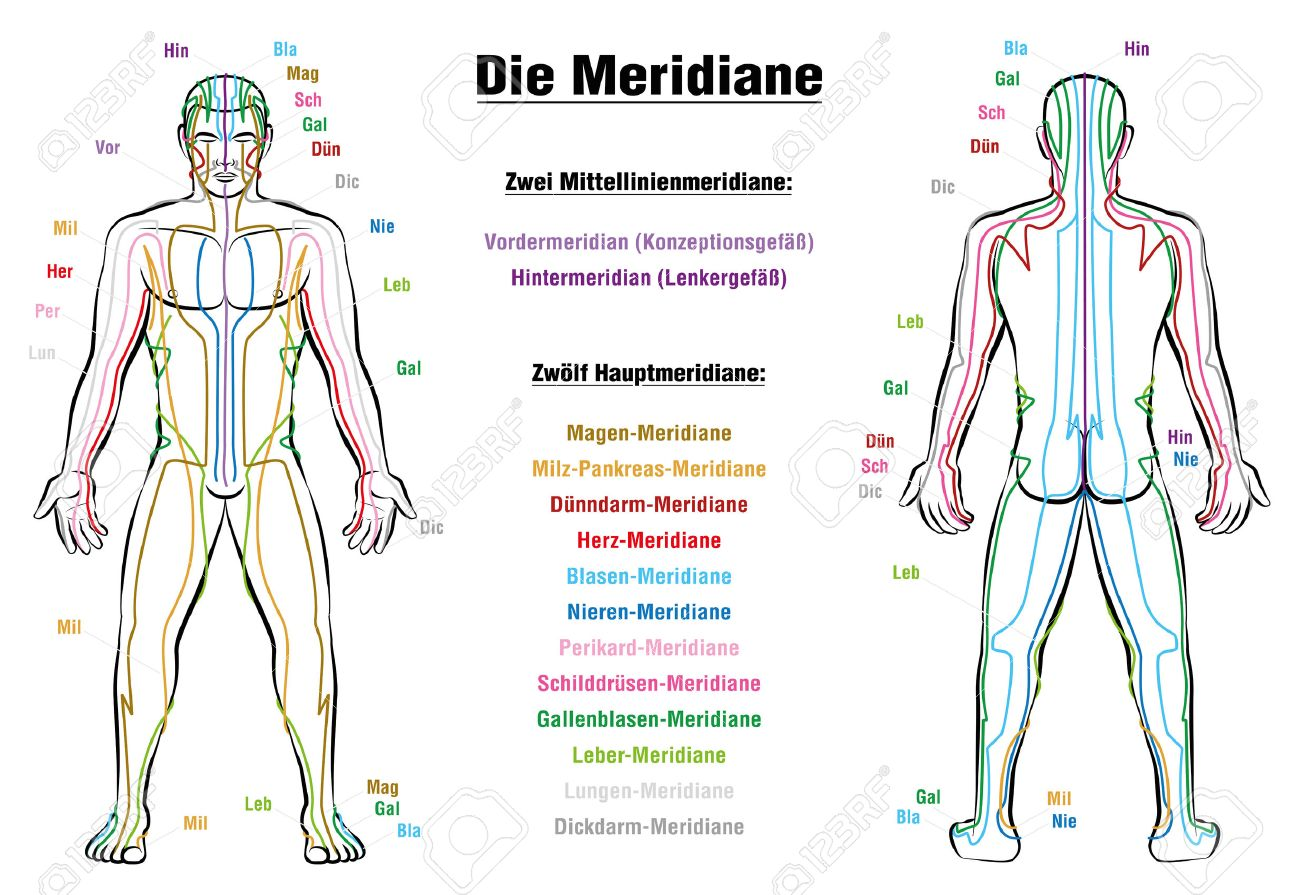 acupuncture meridian charts: Meridian system chart german labeling male body with