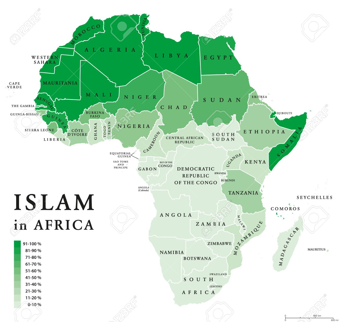 Islam Distribution In Africa. Political Map Of Muslim Population