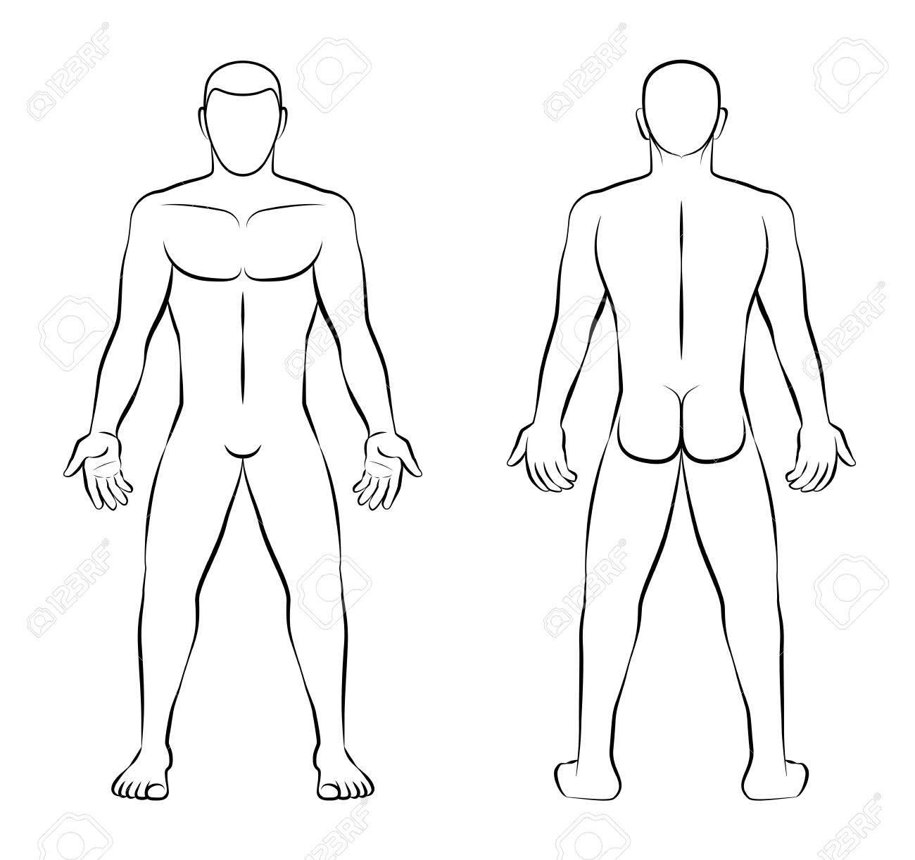Hombre Desnudo - Ilustración De Contorno - Vista Frontal Y Vista ...