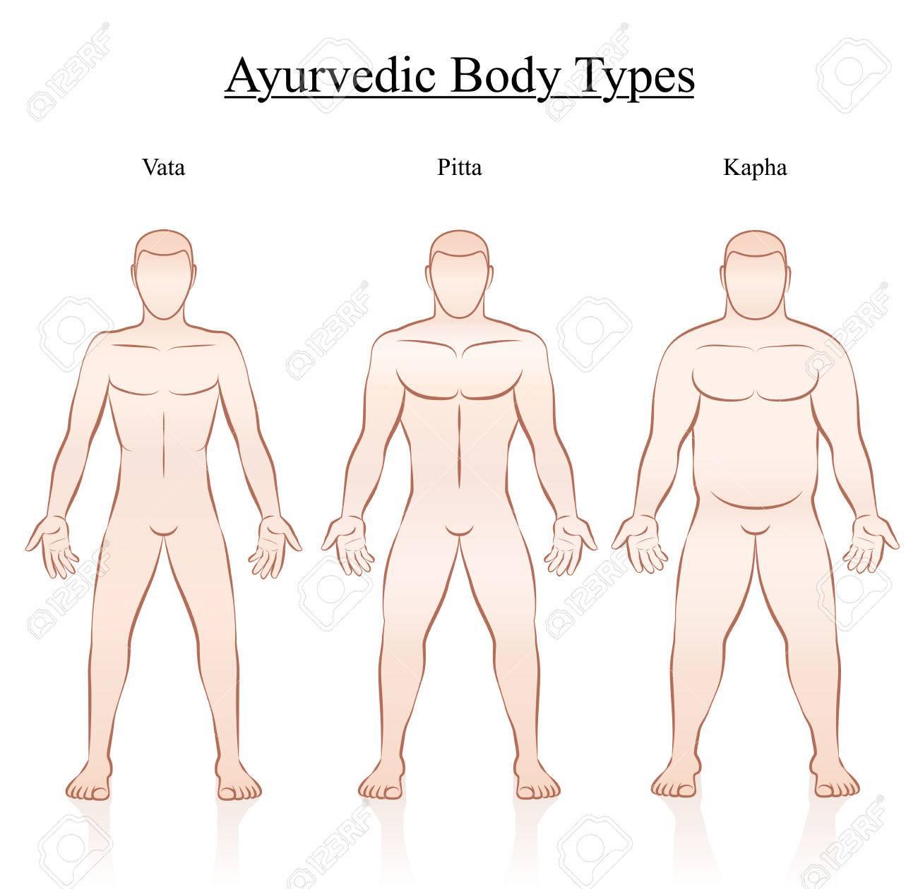 Ayurvedic Body Constitution Types Vata Pitta Kapha Outline