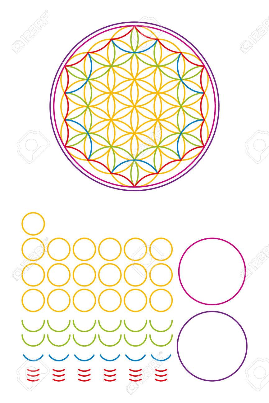 Flower Of Life Components And Building Set Ancient Symbol Composed