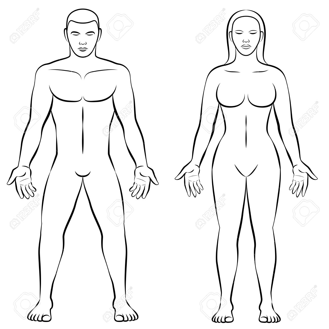 Man And Woman Outline Illustration For Comparison Of Female
