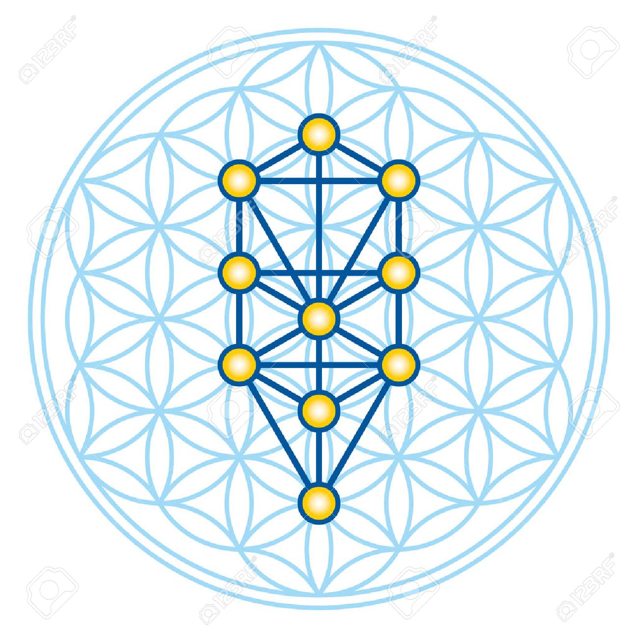 Flower of Life in Tree of Life. Sephirots of Kabbalah in ancient symmetrical symbol, composed of multiple overlapping circles, forming a flower like pattern. Sacred geometry. Illustration. Vector. Standard-Bild - 73766244
