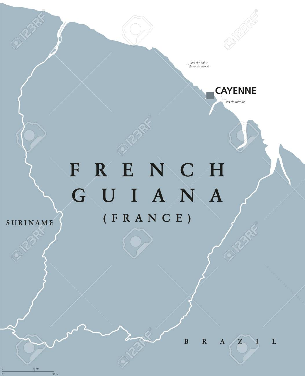 Capital Of France Map.French Guiana Political Map With Capital Cayenne And Borders