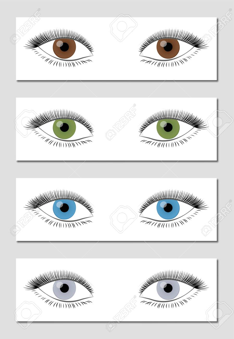 Eye Color Chart In Dominant Order Of Occurrence Brown Green