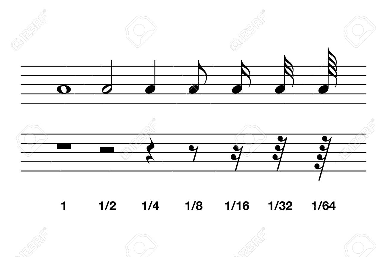 Standard note values and rests in western music notation. The relative duration of a note and the interval of silence in a piece of music, marked by specific symbols. Illustration over white. Vector. - 129969732